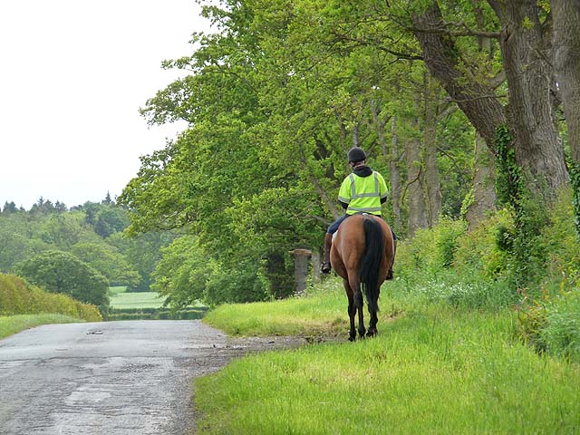 horse rider on a countryside lane
